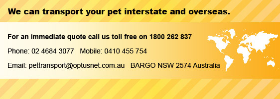 We transport your pet interstate and overseas. For an immediate quote cal us toll free on 1800 262 837. Phone: 02 4684 3077 Mobile: 0410 455 754 BARGO NSW 2574 Australia